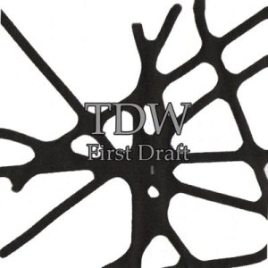 TDW - First Draft cover art
