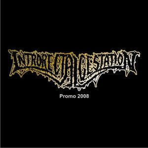Introrectalgestation - Promo 2008 cover art