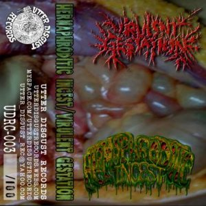 Virulent Gestation - Virulent Gestation / Hermaphroditic Incest cover art