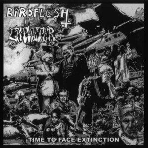 Catheter / Birdflesh - Time to Face Extinction cover art