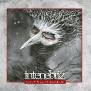In Tenebriz - Autumn Constellation cover art