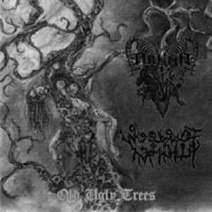 Arkha Sva / Woods of Infinity - Old Ugly Trees cover art