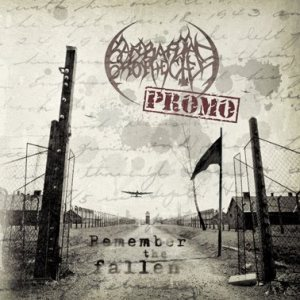 Barbarian Prophecies - Remember the Fallen cover art
