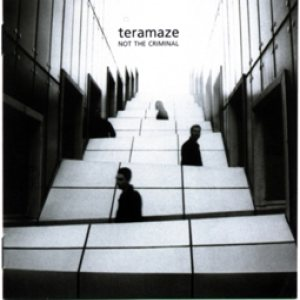 Teramaze - Not the Criminal cover art