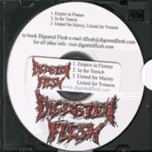 Digested Flesh - Demo cover art
