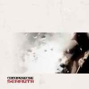 Senmuth - No More Sense cover art