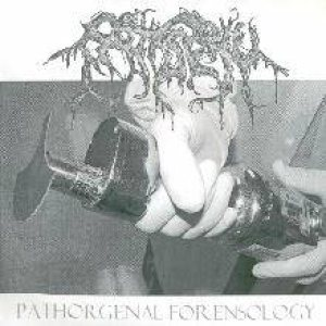 Patisserie - Pathorgenal Forensology cover art