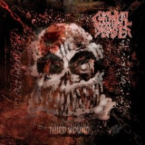 Chemical Disaster - Third Wound cover art