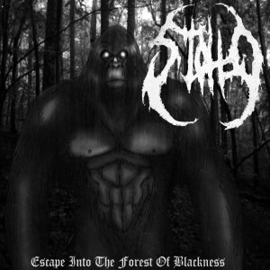 Stollo - Escape Into the Forest of Blackness cover art