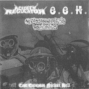 Acidity Regulator - East European Nuclear Hell cover art