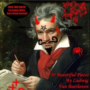 DPOS!!! - 30 Beautiful Pieces By Ludwig Van Beethoven cover art