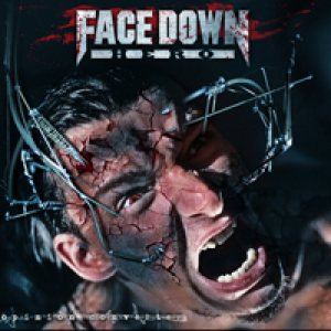 Face Down Hero - Opinion Converter cover art