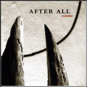 After All - Wonder cover art