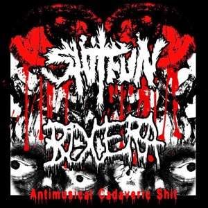 ShitFun - Antimusical Cadaveric Shit cover art