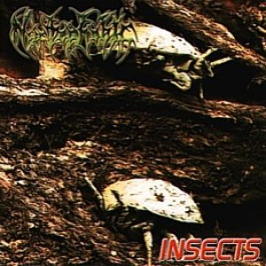 Nyctophobic - Insects cover art