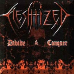 Fleshtized - Divide and Conquer cover art