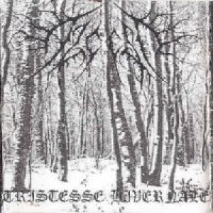 Alcest - Tristesse Hivernale cover art