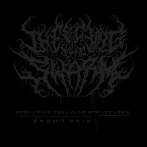 Infecting the Swarm - Reshaping Cellular Structures cover art