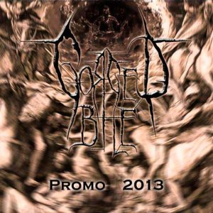 Gorged Bile - Promo 2013 cover art