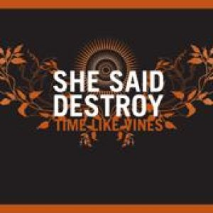 She Said Destroy - Time Like Vines cover art