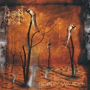 Burden Of Grief - Fields of Salvation cover art