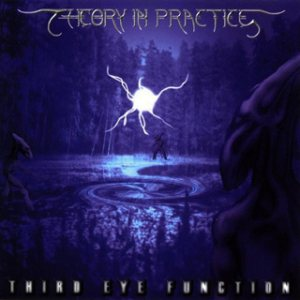 Theory In Practice - Third Eye Function cover art