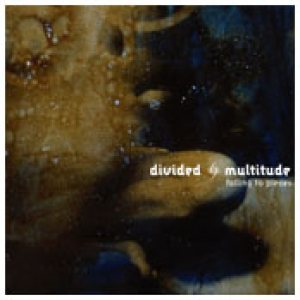 Divided Multitude - Falling to Pieces cover art