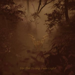 Taarma - For the Dying Pale Light cover art