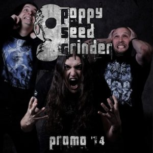 Poppy Seed Grinder - Promo 2014 cover art