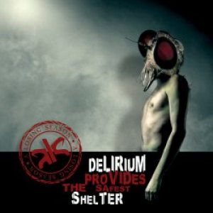 A Losing Season - Delirium Provides the Safest Shelter cover art