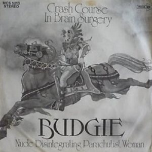 Budgie - Crash Course in Brain Surgery cover art
