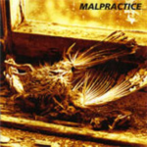 Malpractice - Of Shape and Balance cover art