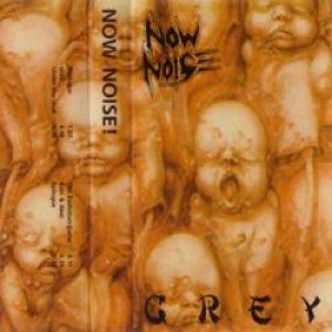 The Now Noise - Grey cover art