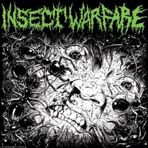 Insect Warfare / Carcass Grinder - Insect Warfare / Carcass Grinder cover art