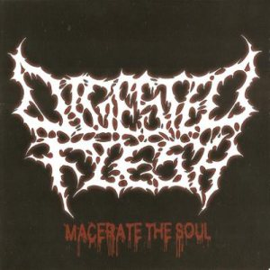 Digested Flesh - Macerate the Soul cover art