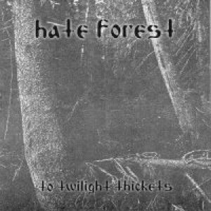 Hate Forest - To Twilight Thickets cover art
