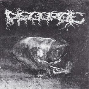 Disgorge / Squash Bowels - Grind Your Head / Disgorge cover art