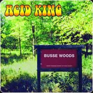 Acid King - Busse Woods cover art