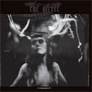 The Secret - Disintoxication cover art