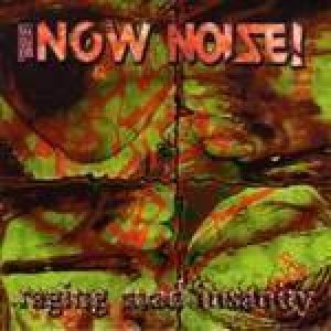 The Now Noise - Raging Mad Insanity cover art