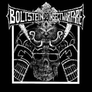 Insect Warfare / Bolt Stein - Bolt Stein / Insect Warfare cover art