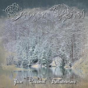 Frozen Mist - Past Seasonal Hallucinations cover art