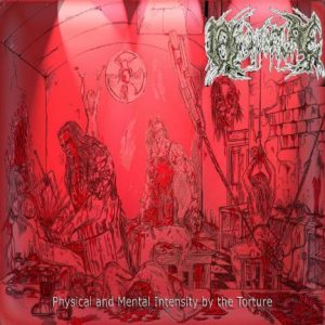 Flesh Torture - Physical and Mental Intensity by the Torture cover art