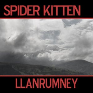 Spider Kitten - Llanrumney cover art