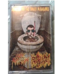 Fecalizer / Fecal Addiction - Addicted to the Toilet Pleassures cover art