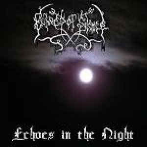 Echoes of Silence - Echoes in the Night cover art