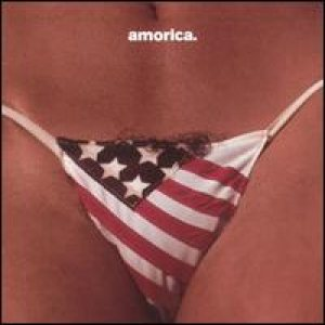 The Black Crowes - Amorica cover art