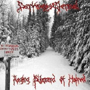 DarknessEternal - Raging Blizzard of Hatred cover art