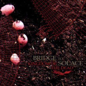 Bridge to Solace - Kingdom of the Dead cover art