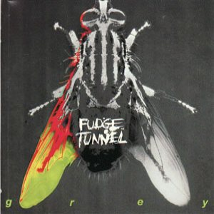 Fudge Tunnel - Grey cover art
